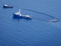 דליפת הנפט מפרץ מכסיקו / צלם: רויטרס